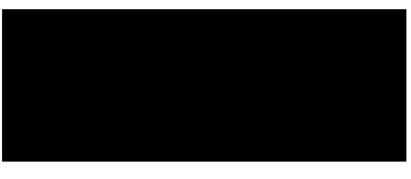 Vänersborgs vandrarhem logotype